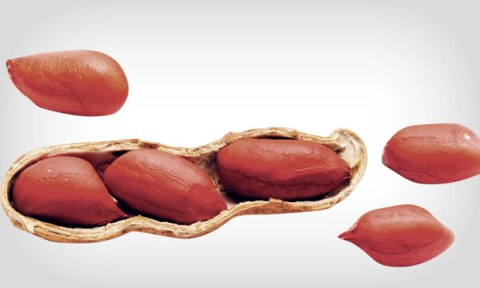 dieta-amendoim-liberado